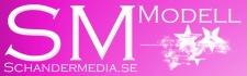 sm-modell